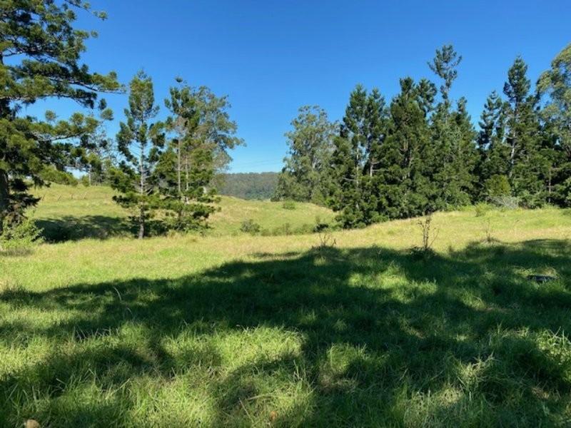 99 Dugan Road, Theresa Creek NSW 2469
