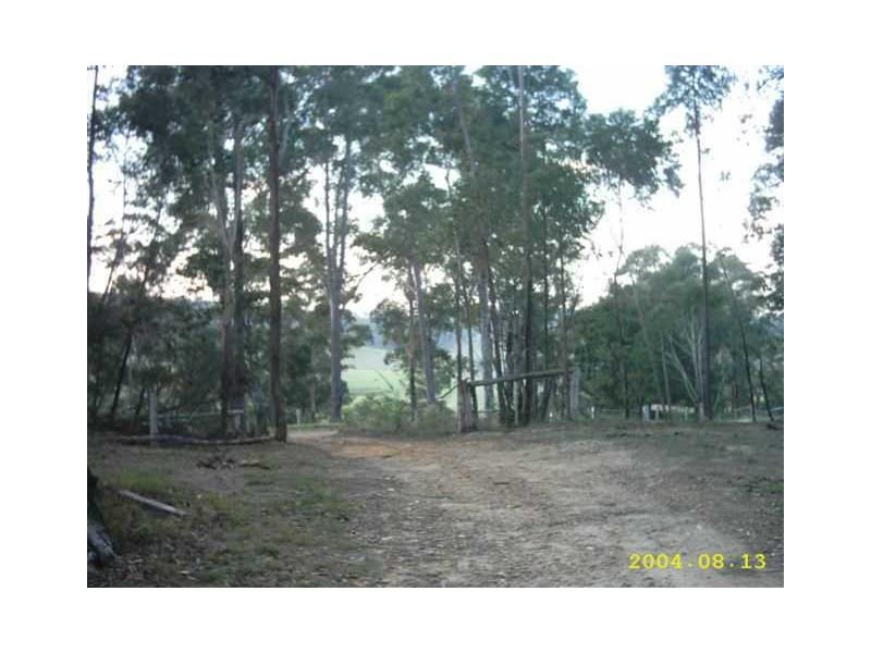 131 Coila Creek Road, Coila NSW 2537