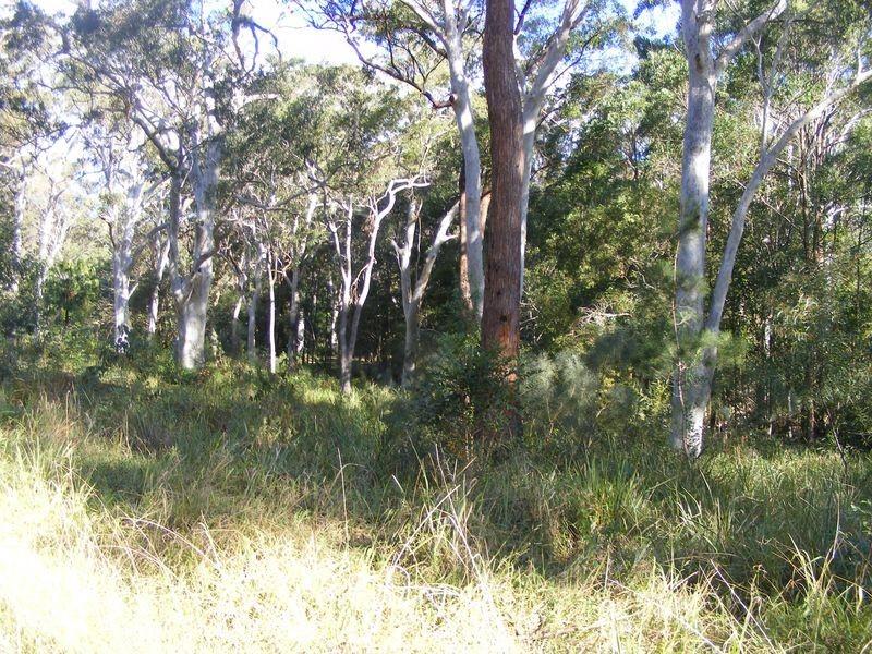 Lot 5 Gap Beach Road, Arakoon NSW 2431