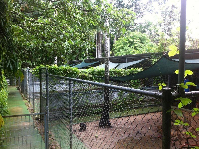 80 Pheasant Drive, Mcminns Lagoon NT 0822