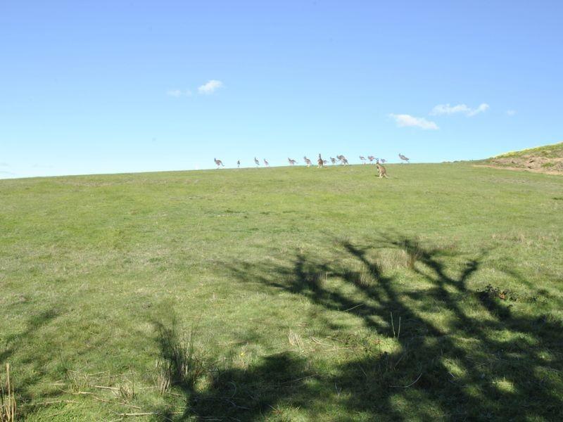 3 Grenfell Close, Hidden Valley VIC 3756