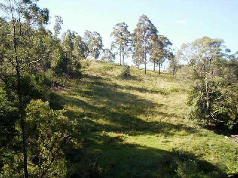 Lot 492 Mount Darragh Rd, Bald Hills NSW 2549