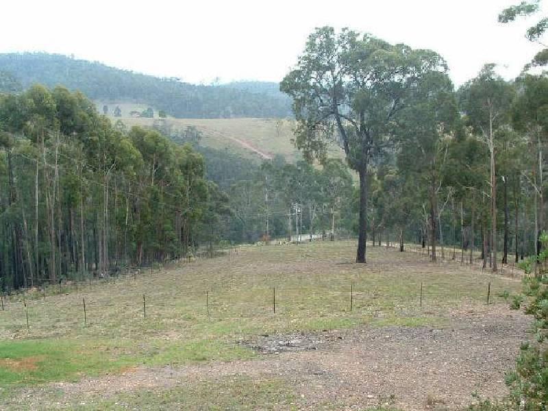 1405 Mt Daragh Road, Bald Hills NSW 2549