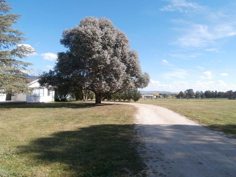 311 Eleven Mile Drive, Bathurst NSW 2795