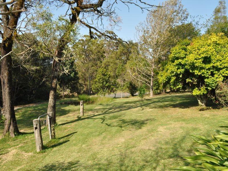 Elands NSW 2429