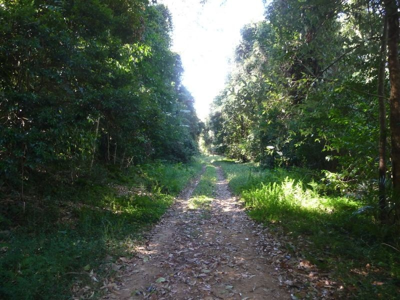 Hannam Vale NSW 2443