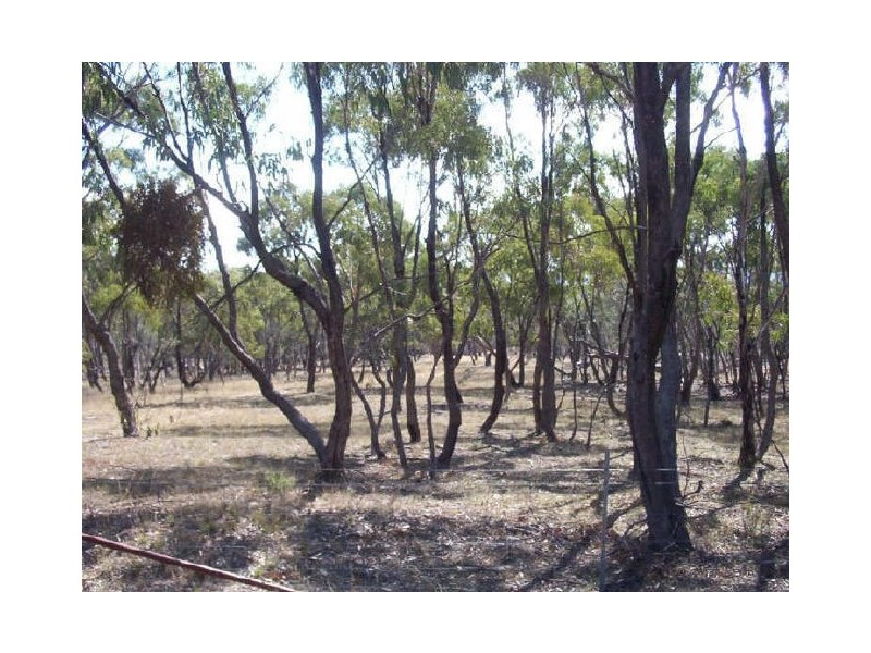 Lot 128 Ashvale Road, Adaminaby NSW 2629