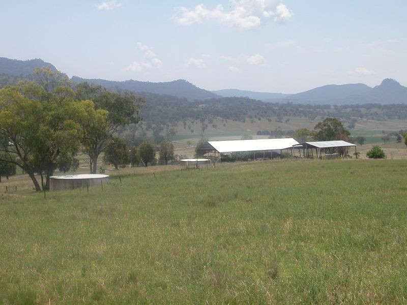 86 Lee Creek, Bylong NSW 2849