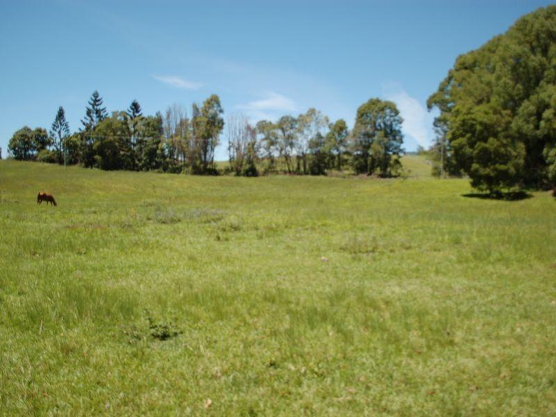 1072 Valery road, Valery NSW 2454