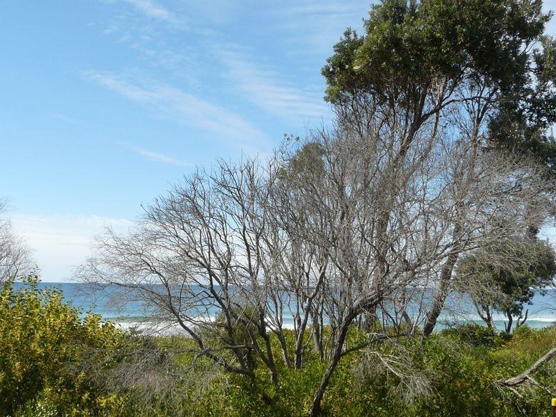 21 Jubilee Parade, Diamond Beach NSW 2430