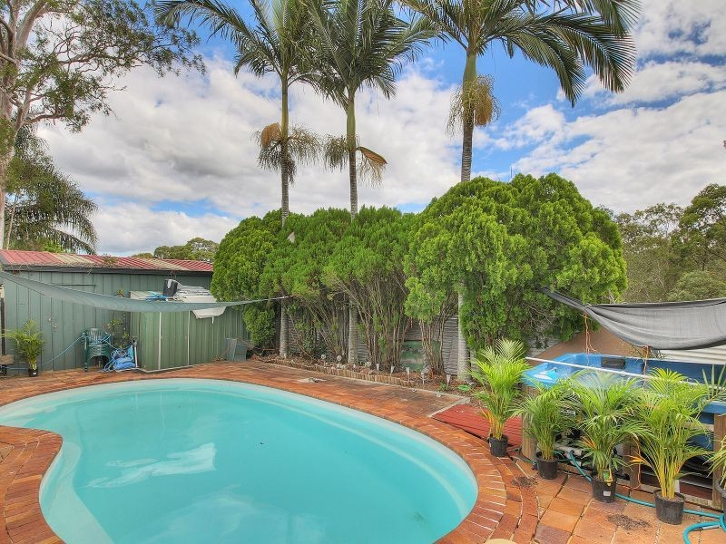 61 Helicia Street, Algester QLD 4115