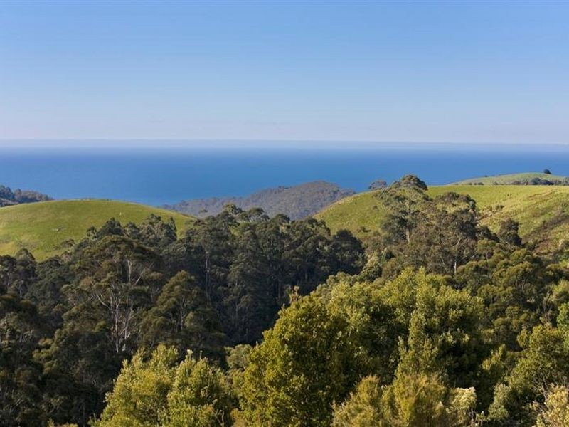 900 Wild Dog Road, Apollo Bay VIC 3233