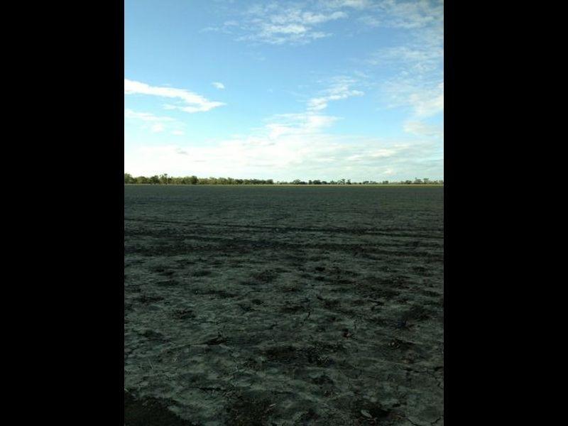 Part 'Bethelen', Thallon QLD 4497