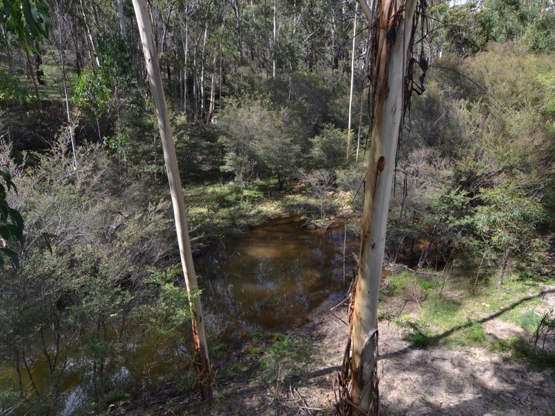 Lot 39 Pitts Lane, Hartley Vale NSW 2790