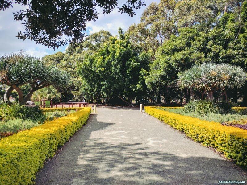 5302/42 Pemberton Street, Botany NSW 2019