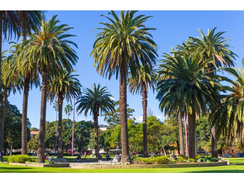 20/1-7 Boronia Street, Redfern NSW 2016