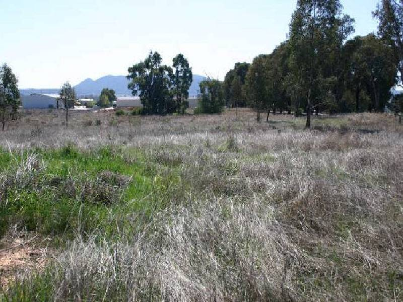 Lot 8  Mudgee Valley Business Park, Aarons Pass NSW 2850