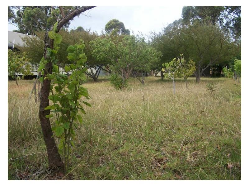 58 Idlewild Avenue, Sanctuary Point NSW 2540