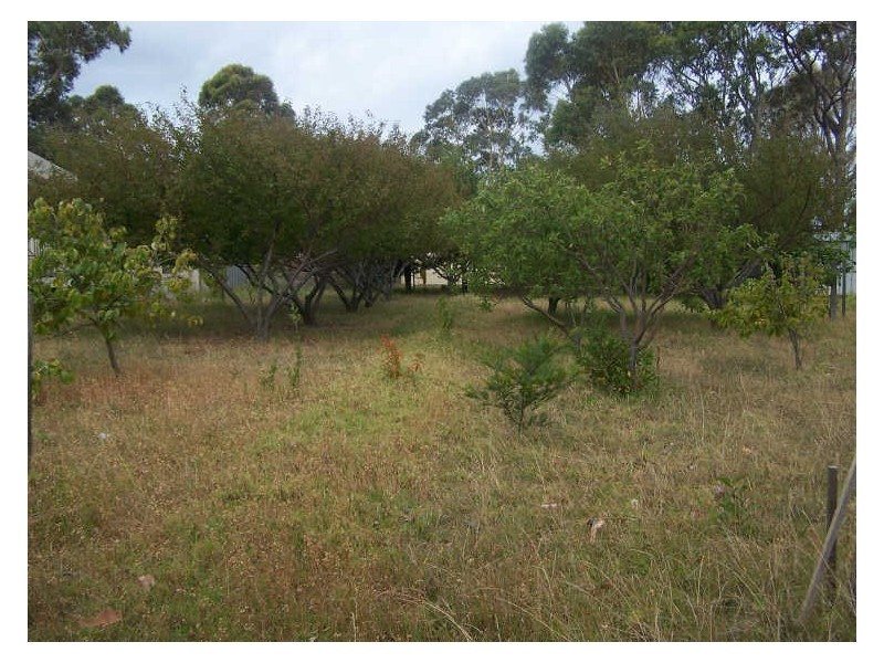 56 Idlewild Avenue, Sanctuary Point NSW 2540