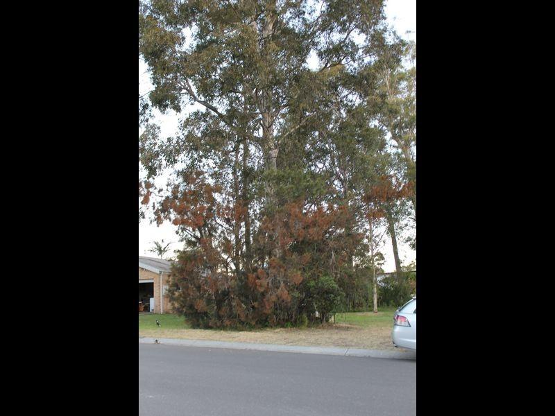 Lot 109 Links Avenue, Sanctuary Point NSW 2540