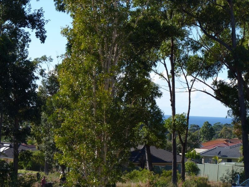 719/ Golden Wattle Drive, Ulladulla NSW 2539