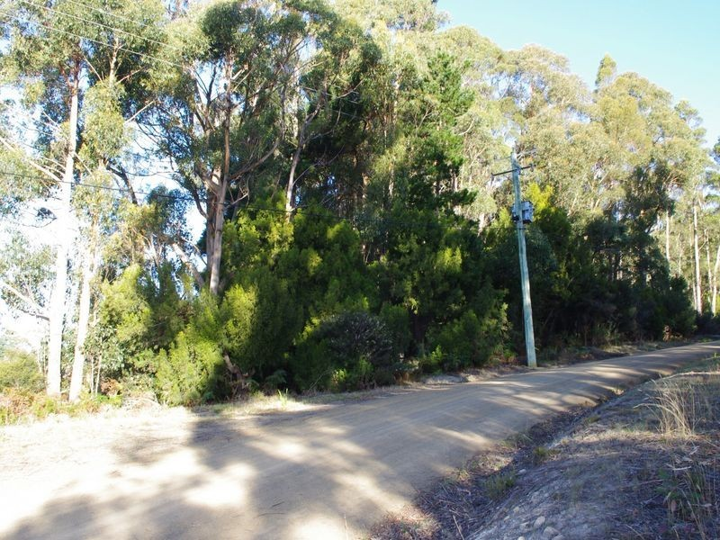 Channel Highway, Flowerpot TAS 7163