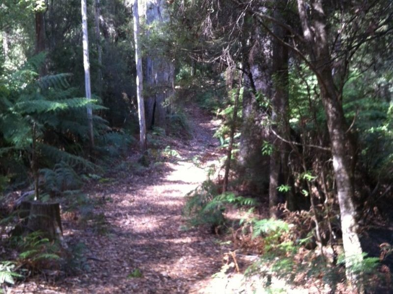 Pages Road, Moorleah TAS 7325