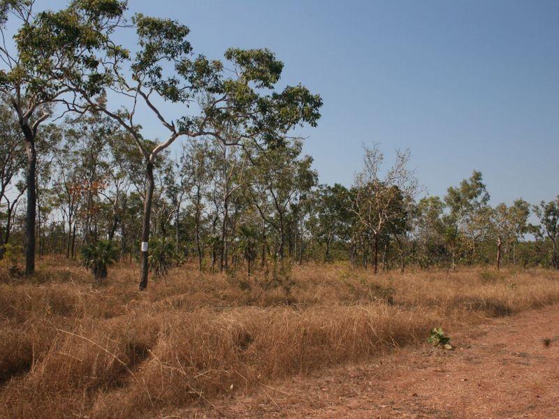 135 Coda Road, Acacia Hills NT 0822