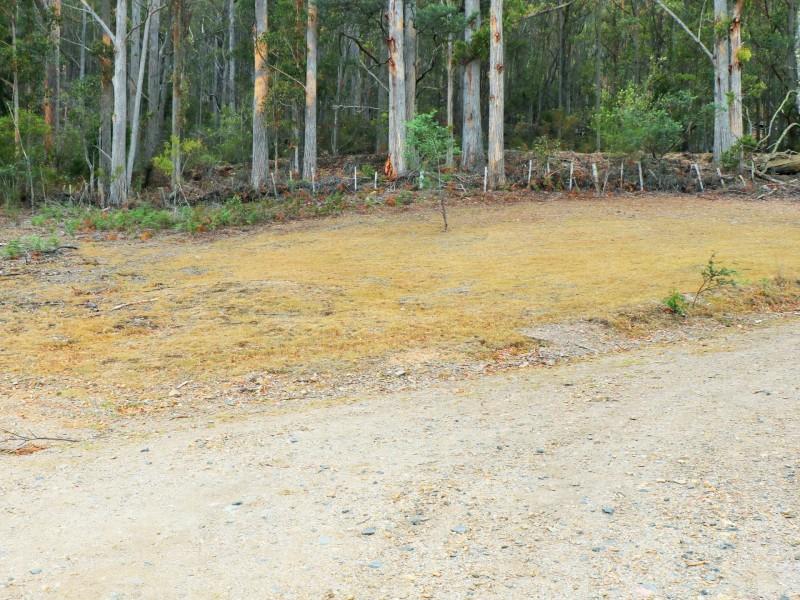 285 Gardiners Creek Road, St Marys TAS 7215