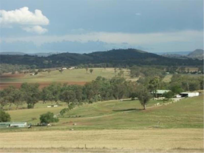 272 Tongues Lane, Loomberah NSW 2340