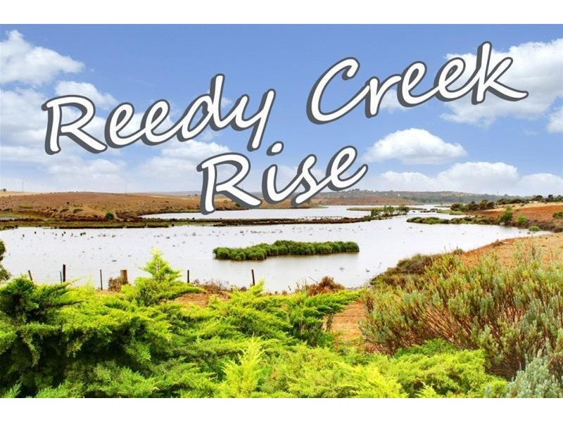 Lot 599 'Reedy Creek Rise' Caloote Road, Caloote SA 5254
