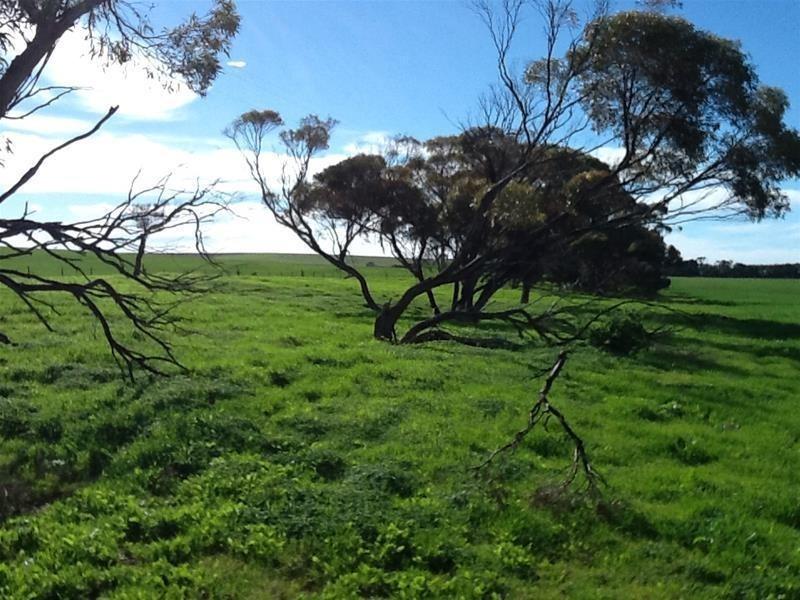 'The Crossing' Adelaide & Mannum-Adelaide Road, Mannum SA 5238
