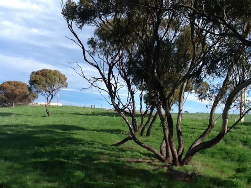 12 Lots Mannum Road and Adelaide-Mannum Road, Mannum SA 5238
