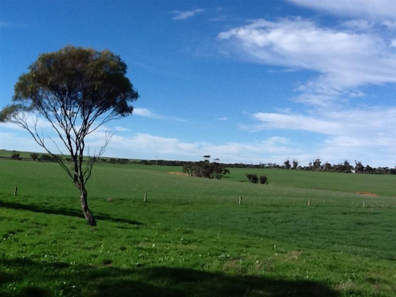 Lot 55 Mannum and Adelaide-Mannum Road, Mannum SA 5238