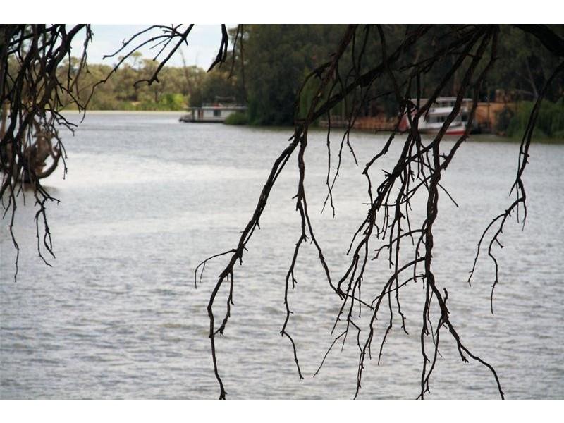 44 River Drive, Buronga NSW 2739