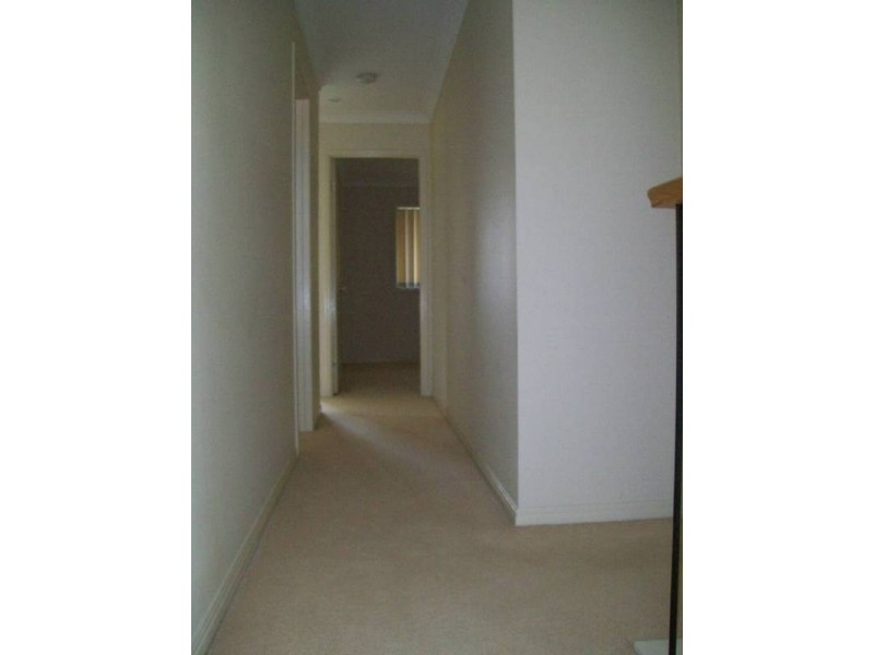 8 Anna Drive, Raceview QLD 4305