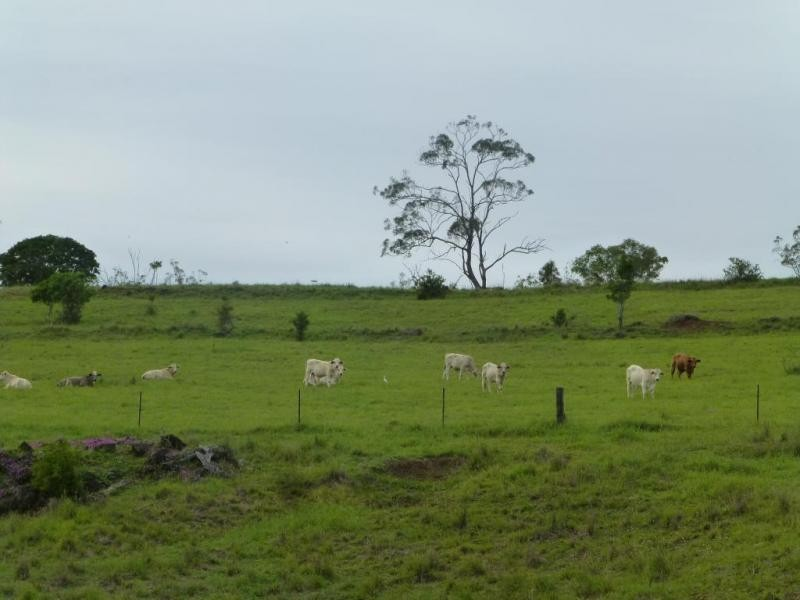 Dallarnil QLD 4621