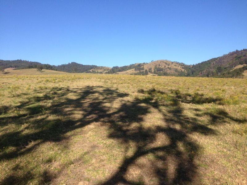 Masseys Creek Road, Gresford NSW 2311