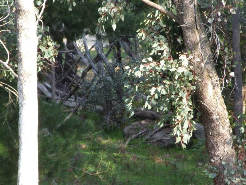 Lot 102,  Beelerup Road, Beelerup WA 6239