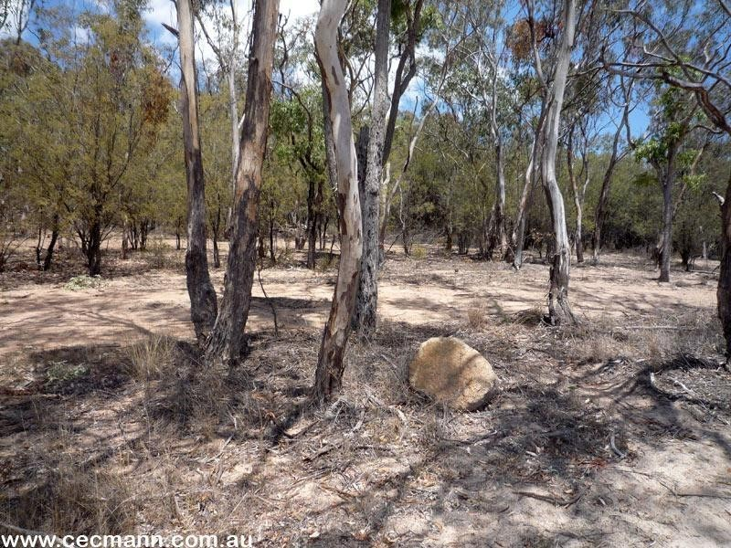 Lot 21 Curtin Road, Ballandean QLD 4382