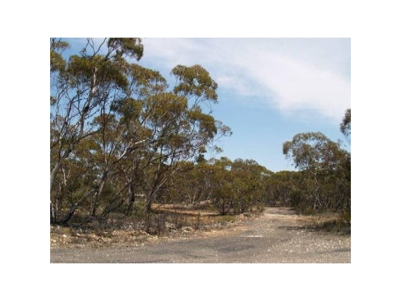 Lot 56 &57 High STREET, Alawoona SA 5311