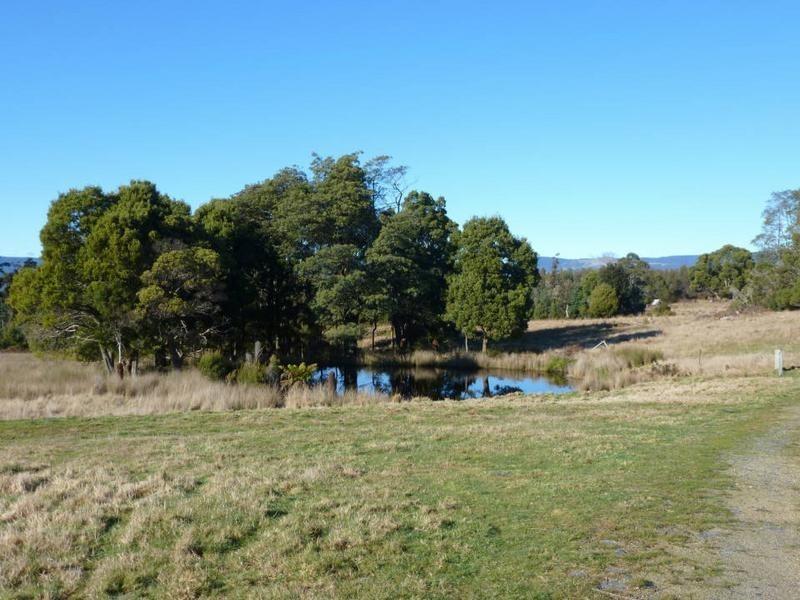 33317 Tasman Highway, Legerwood TAS 7263