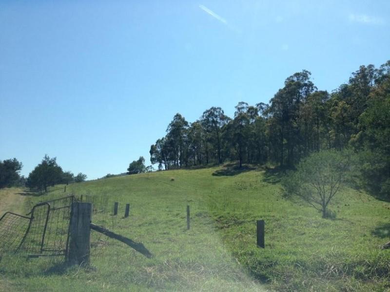 460 Burrier Road, Barringella NSW 2540