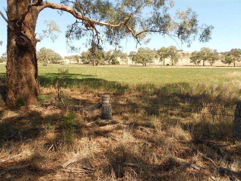 52 Goodacre Drive, Woodstock NSW 2793