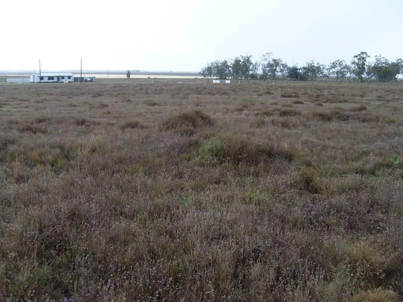 57 Wambo Drive Pirrinuan, Pirrinuan QLD 4405
