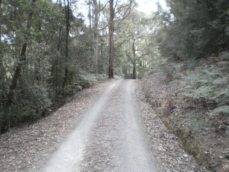 237 Picketts Road, Abbotsham TAS 7315