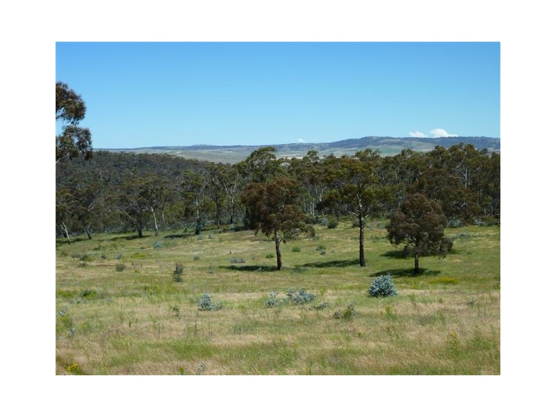 96 – 98 Stuartfield Road, Adaminaby NSW 2629