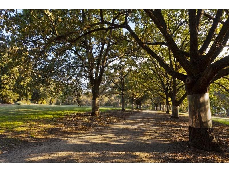 12/1-3 Rex Avenue, Alphington VIC 3078