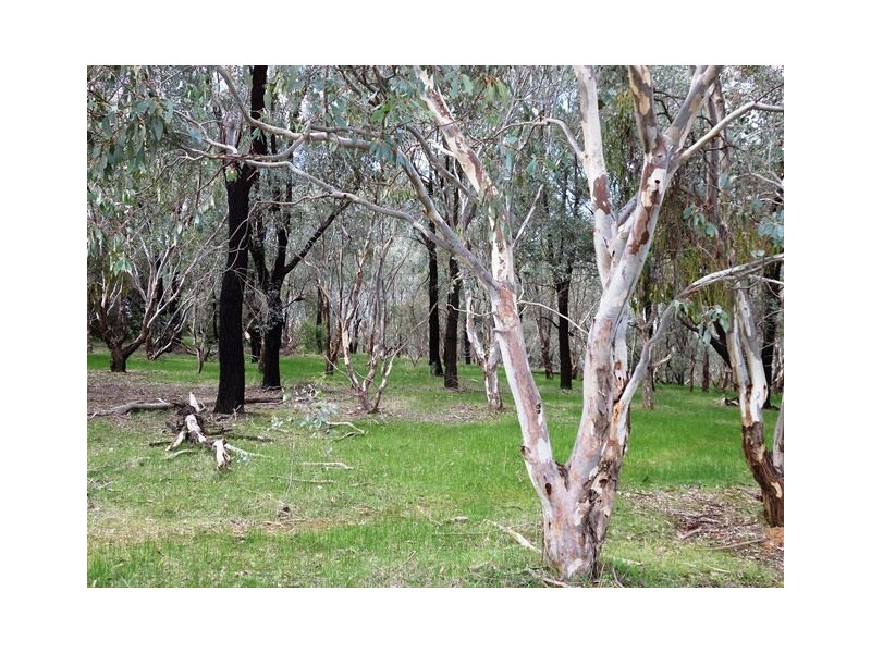 Lot 721,  FOREST DRIVE, Thurgoona NSW 2640
