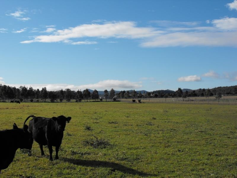 1450-1451 Bylong Valley Way, Baerami NSW 2333